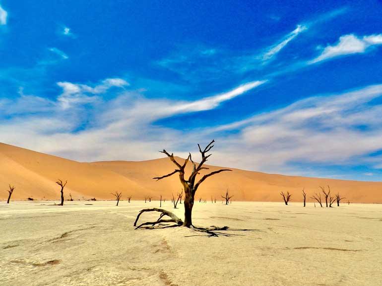 Пустинята Намиб
