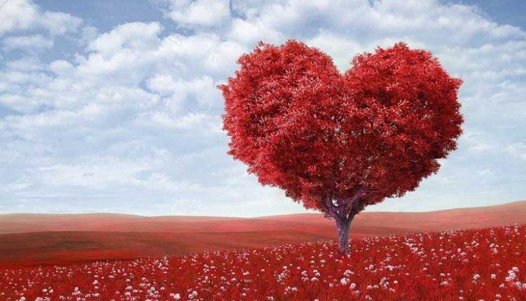 идеи за подарък за Свети Валентин