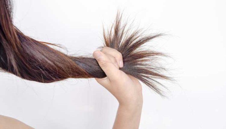 маска за коса с корен от репей
