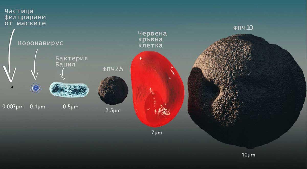 размер на коронавирус