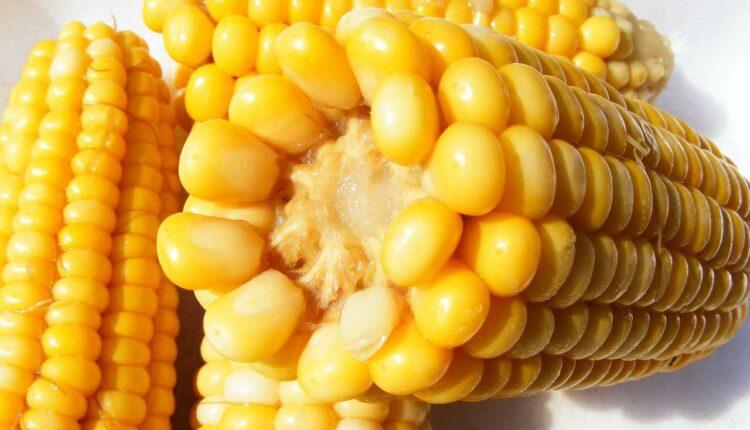 Колко време се вари царевица
