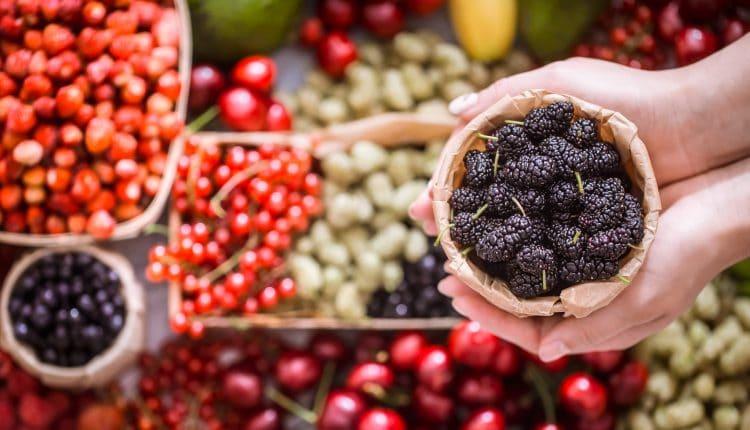 антиоксиданти храни