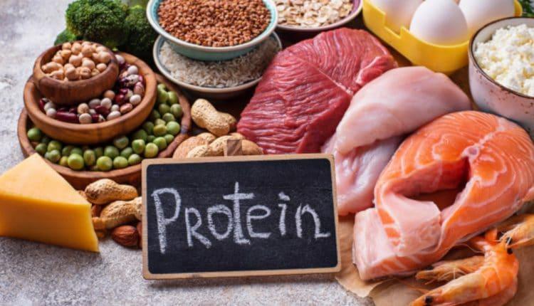 храни богати на протеин
